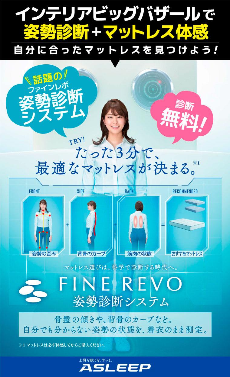 FINE REVO 姿勢診断システム