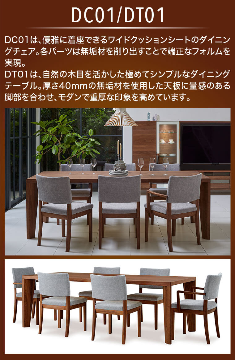 DC01/DT01