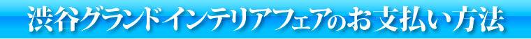 渋谷グランドインテリアフェアのお支払い方法